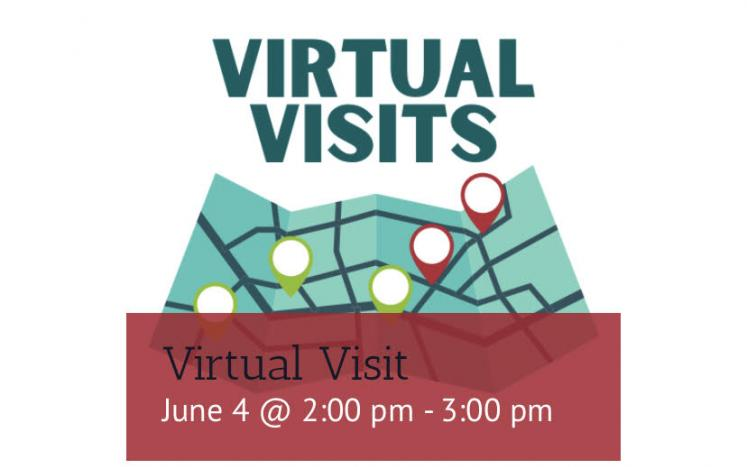 Virtual Visits green and red map icon